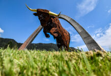 Red Bull Ring To Welcome Fans Back To Motogp
